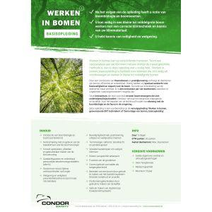 Opleiding: Werken in bomen, basis op 22-26 nov in Mechelen